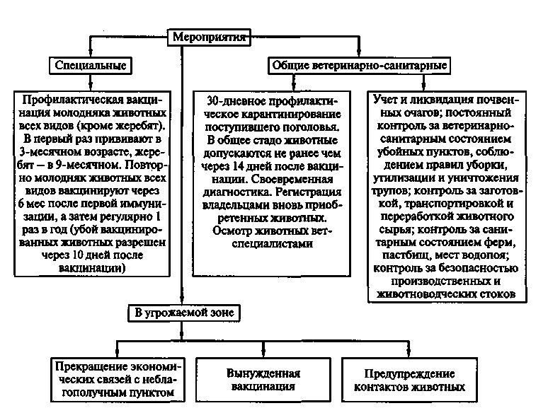 инструкция по оздоровлению крупного рогатого скота от диплококковой инфекции