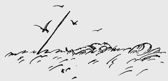 Необыкновенная история о чудесной свирели и зеленом петушке