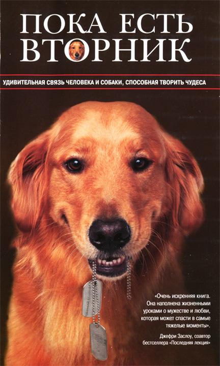 Пока есть Вторник. Удивительная связь человека и собаки, способная творить чудеса