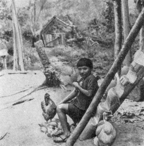 Последняя река. Двадцать лет в дебрях Колумбии