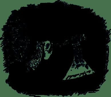 Питер Нимбл и волшебные глаза