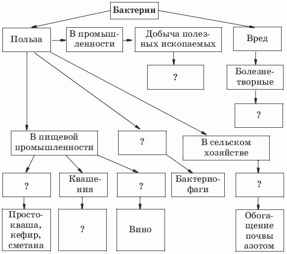 Схема фотосинтеза 5 класс фото 993